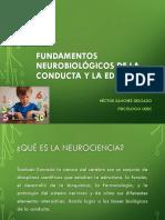 Fundamentos Neurobiológicos de La Educación