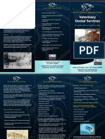 Equine Dental Brochure