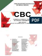 DOC PATRÍCIA - 28-02-18 CBC - Anos Iniciais (1) Ultima Versão (6)