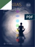CHAKRAS Eva Lara eBook