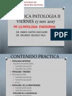 Práctica 13 - Patología Endocrina