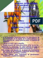 Cultivos Expo