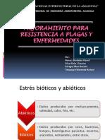 expo-fito.pptx