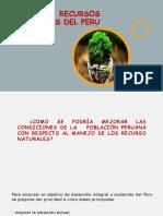 ECOLOGIA-2DA-EXPOSICION