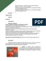 Informe No. 4 Hongos