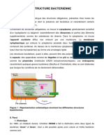 2 .Structure Bacterienne