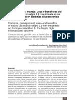 Características del Saúco - Sambucus Nigra y otras variedades.pdf
