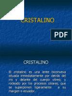 Anatomía Del Cristalino - Saraux