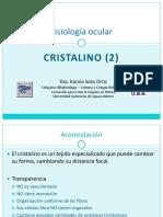 Cristalino. Fisiología Ocular (2)