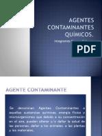Agentes quimicos expo.pptx