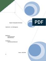 Rapport Cartographie Numérique