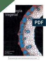 Atlas de histología vegetal - Krommenhoek.pdf