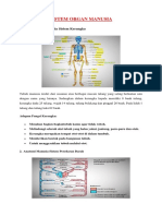 366372921 Anatomi Tubuh Manusia Lengkap