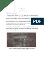Capítulo i La Empresa