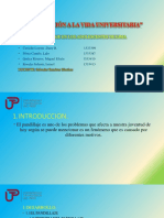 INDUCCIÓN A LA VIDA UNIVERSITARIA.pptx