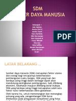 SDM KEL 1.pptx