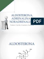 Aldosterona, Adrenalina y Noradrenalina