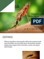 Slide Lapsus Malaria
