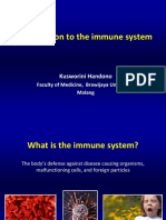 Introduction to the Immune System S2 Reg + Libia 2018