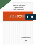 04. Areas de Brodmann