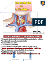 Fisiopatología Del S. Endocrino