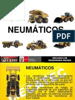 NEUMATICOS 01