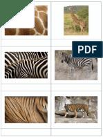 texturas animales.pdf