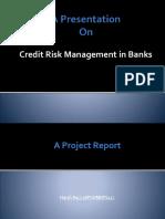 creditriskmanagementpresentation-170218113135 (2)