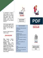 triptico bullying.pdf