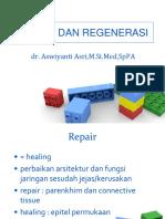 1.6.2.4 - Repair Dan Regenerasi Sel