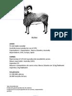 Tema 9 clase 3 ovinos.pptx
