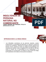 INSOLVENCIA-DE-PERSONA-NATURAL.pdf