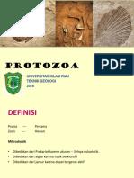 Paleon # 2 - Protozoa