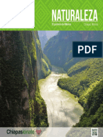 Chiapas Naturaleza