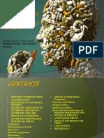 Antibiotics 140721032343 Phpapp01