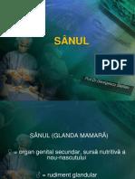 Sinul (Glanda Mamara) - Anatomie