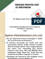 2. Sejarah Profesi GIZI