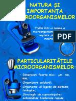 Importanta microorganismelor