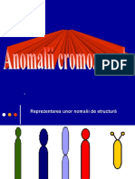 Anomalii de structura.ppt