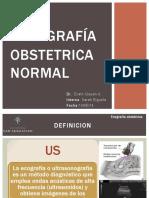 Ecografia Obstetrica Normal