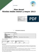 PLAN ANUAL 2013 niveles medios SAN JUAN.docx
