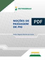 Noções de Passagem de PIG