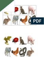 Lotos animaux.pdf