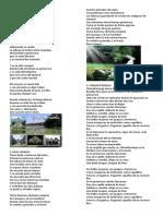 25 Canciones Guatemaltecas