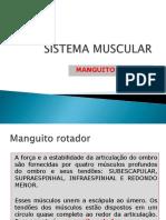 (SM1) Manguito Rotador OK