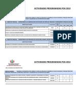 Plan de Trabajo Anual 2013