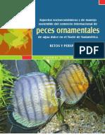 peces_ornamentales