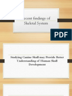 Current Research of Skeletal System