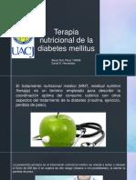 Terapia Nutricional de La Diabetes Mellitus
