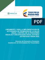 Lineamientos Salud Visual 2017
